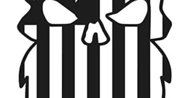 Beard Punisher USA Flag Skull