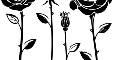Elegant Black And White Flower Vector Art eps jpg Image