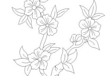 free flower vector