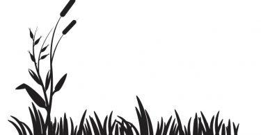 free vector grass