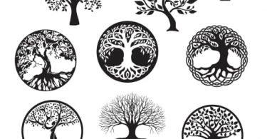 tree of life free vector