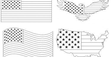 free american flag vector