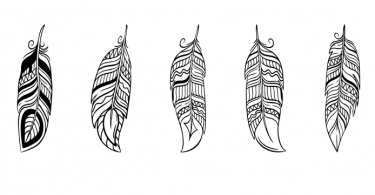 free vector feather